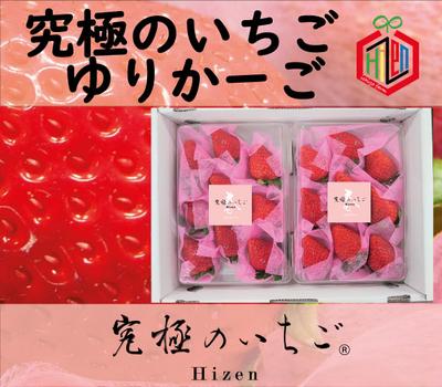 【究極のいちご Hizen】ゆりかーご〜春バージョン〜1箱(2パック入り)【送料込み】