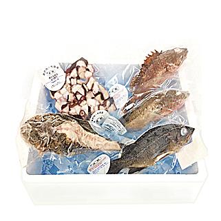 竹原産「凍眠」新鮮!獲れたて!お魚詰め合わせ4~5種セット