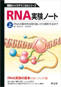 RNA実験ノート 上巻**羊土社/稲田利文/9784897069241**