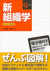 Qシリーズ 新組織学 改訂第7版**9784784911790/日本医事新報社/野上 晴雄/978-4-7849-1179-0**