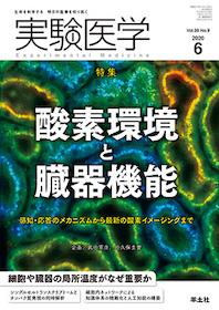 実験医学 2020年6月 酸素環境と臓器機能**9784758125321/羊土社/企画:武田憲彦・田久/978-4-7581-2532-1**