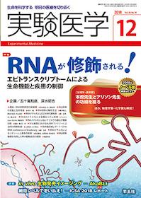 実験医学 2018年12月 RNAが修飾される!**9784758125147/羊土社/企画:五十嵐和彦・深/978-4-7581-2514-7**