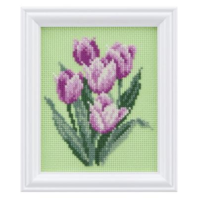 四季折々の花だより 3月 チューリップ No.7623