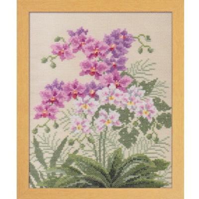 愛すべき花たち 胡蝶蘭 刺繍キット No.7452