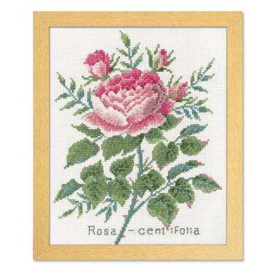 ローザセンティフォーリア ボタニカルガーデン 刺繍キット No.7504