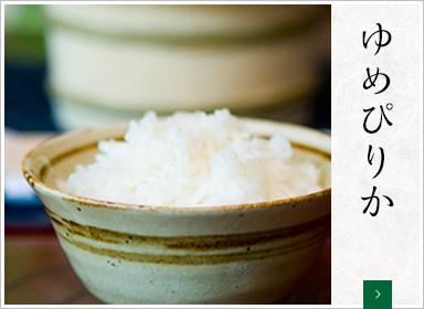 [特別栽培米]ゆめぴりか【北海道産】5kg×2