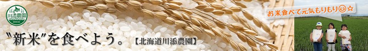 北海道川添農園さんの新米販売スタート!ゆめぴりか、ななつぼし、おぼろづき、全3品種対象。甘み、香り、粘り共に最高の出来。ぜひご賞味下さい。
