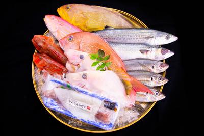 【冷凍】うまかもん海の幸 おまかせセット(送料無料)