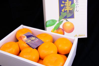 温室ミカン/1.8kg(化粧箱/送料無料)