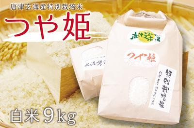 唐津産 つや姫(白米9kg/送料無料)