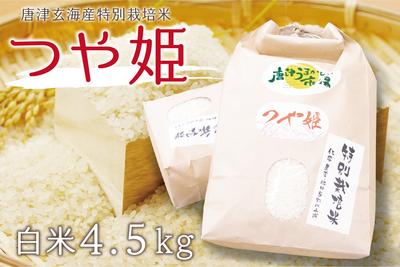 唐津産 つや姫(白米4.5kg/送料無料)