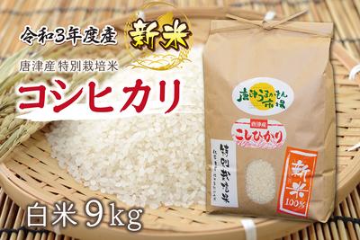 唐津産コシヒカリ【新米】/(9kg/送料無料)