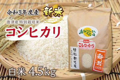 唐津産コシヒカリ【新米】/(4.5kg/送料無料)