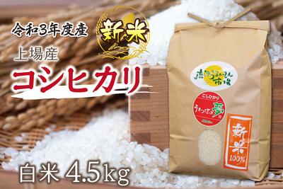 上場産コシヒカリ【新米】/(4.5kg/送料無料)
