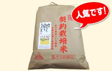 紀州のつぶまる-玄米[5kg]