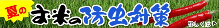 夏のお米の防虫対策