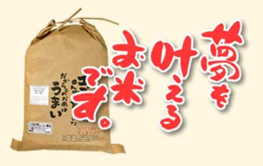 ゆめかなえ-低グルテリン米 腎臓病の治療食に最適なお米[5kg]