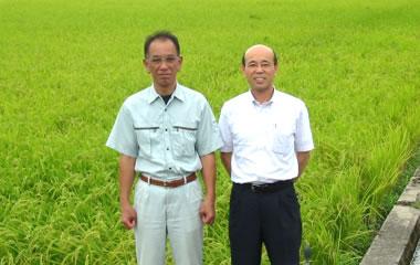 こしひかり-越前大野のお米