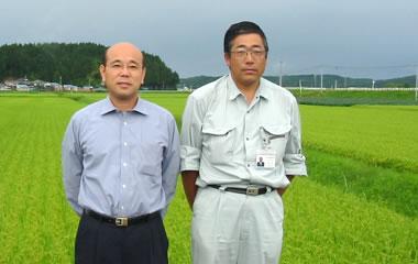 あきたこまち-秋田県由利町しんせい農協のお米[5kg]