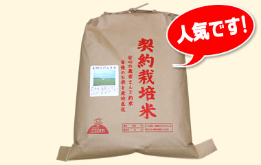 紀州のげんき米-玄米5kg