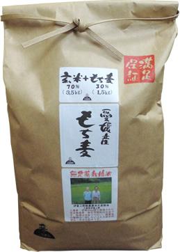玄米もち麦ブレンド黄金比率5kg【伊賀JAS無農薬米70%+もち麦30%】