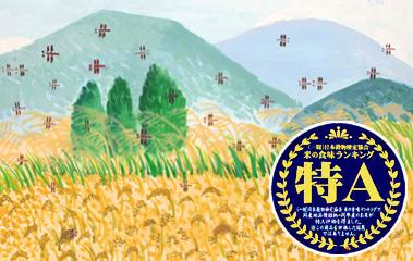 ななつぼし-北海道JAきたそらちの特殊栽培米(クリーンライス)