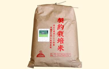 大分のピカイチ米-玄米5kg