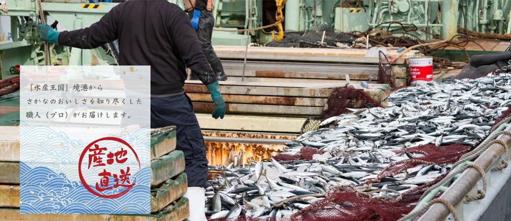 「水産王国」境港から さかな・干物のおいしさを知り尽くした職人(プロ)がお届けします。