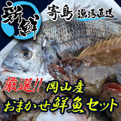 岡山県寄島産旬の鮮魚セット / 海鮮厳選おまかせセット / 漁港直送