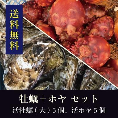 【送料無料!】石巻産殻付き活牡蠣[大サイズ]5個+石巻産活ホヤ5個 セット
