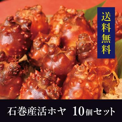 【送料無料!】石巻産活ホヤ 10個セット(サイズ混合)