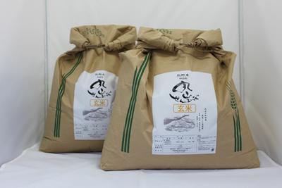 【令和3年産 新米】丸山千枚田米 玄米 30kg(15kg×2)
