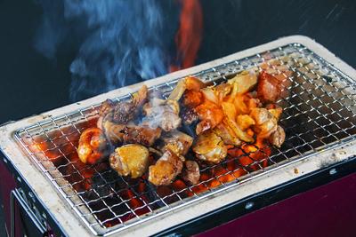 【カット不要で簡単調理】熊野地鶏カット肉 600g