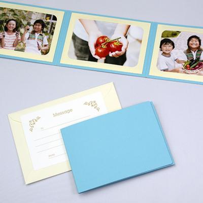 無地表紙 ポケット台紙 2Lサイズ 3面ヨコ (封筒付き・メッセージカード:ツタ)  写真台紙 ペーパーフォトフレーム