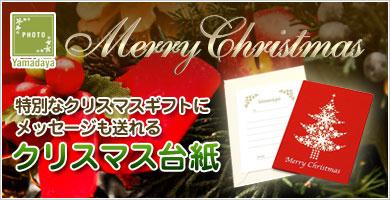 メッセージカードも贈れるクリスマス台紙