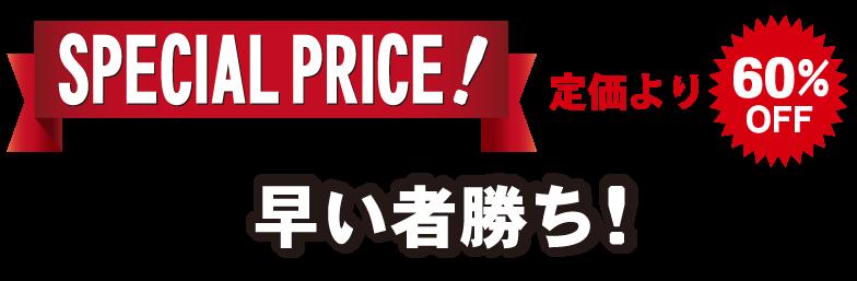 スペシャルプライス早い者勝ち!