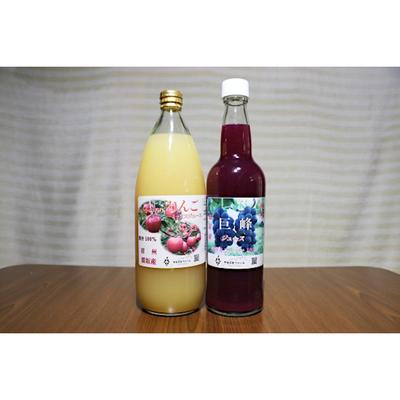 りんごジュース【サンふじ × あいかの香り】 & 巨峰ジュース 果汁100% 2本
