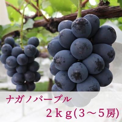 ナガノパープル( 2kg / 3~5房)