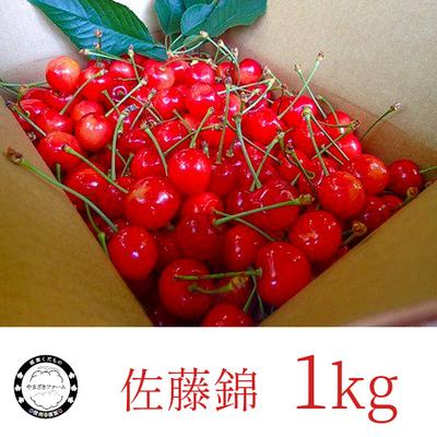 さくらんぼ : 佐藤錦 1kg