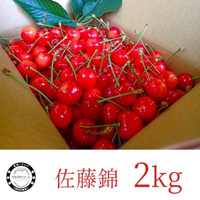 さくらんぼ : 佐藤錦 2kg