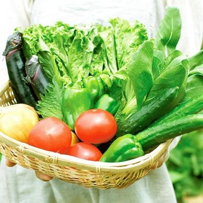 遠野新鮮野菜