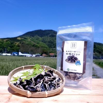 糸島産 天日干し 乾燥きくらげ 30g 完全無農薬