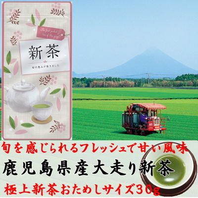 【新茶】【少量美味】2021年産鹿児島大走り新茶30g 極上深蒸し煎茶・希少品種くりたわせ 4/6入荷済【ネコポスOK】