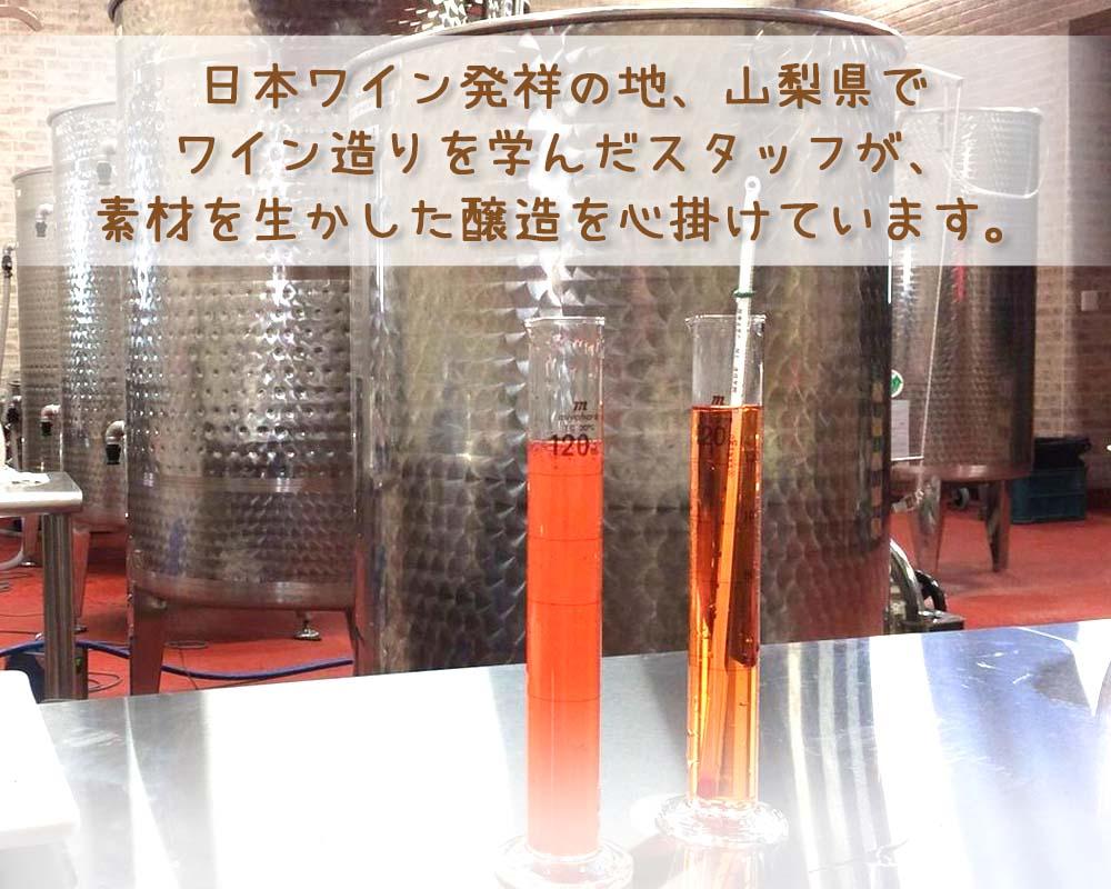 山梨県でワイン醸造を学んだスタッフ