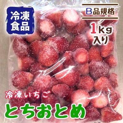 冷凍いちご とちおとめ B品 1kg