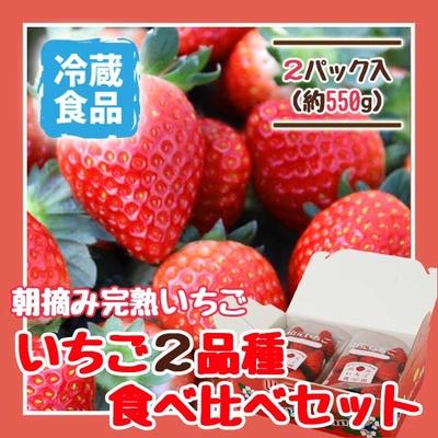 朝摘み完熟いちご 2品種食べ比べセット 2パック