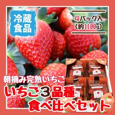 朝摘み完熟いちご 3品種食べ比べセット 4パック
