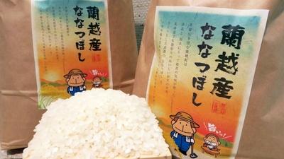 もんすけパッケージ 蘭越産ななつぼし(5kg)【ショクレン北海道】