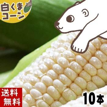 旭山動物園 「白くまコーン」 10本【かに太郎】