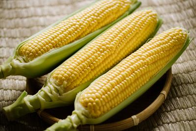 フルーツコーンゴールドラッシュ5kg 8月初旬収穫予定